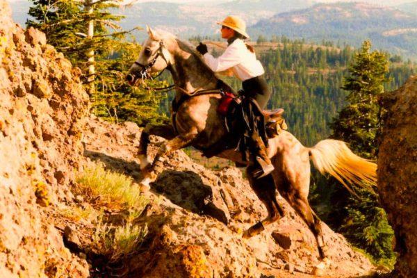Charisse-Glenn-May-2020-horse